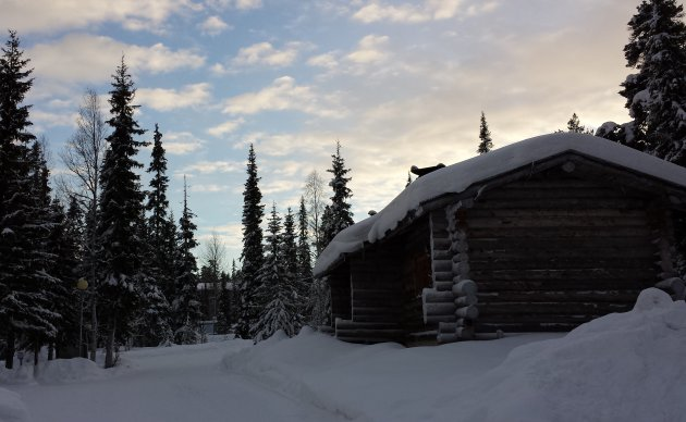Lapland Silver Pine Cabins