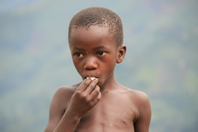 Wilhelminaatjes in de Ugandese bergen