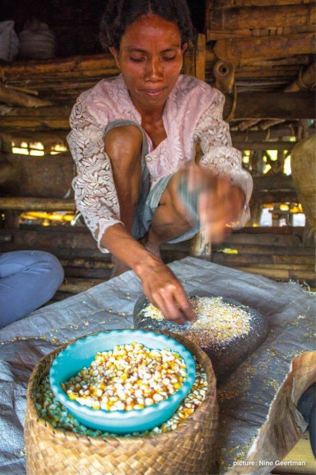 Maisgerecht klaarmaken op Sumba