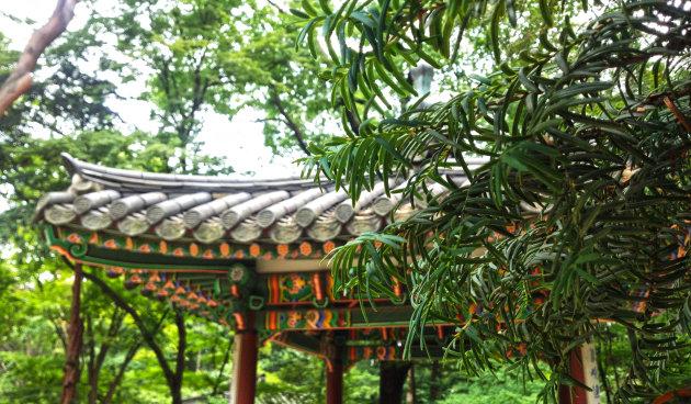 Tempel en natuur