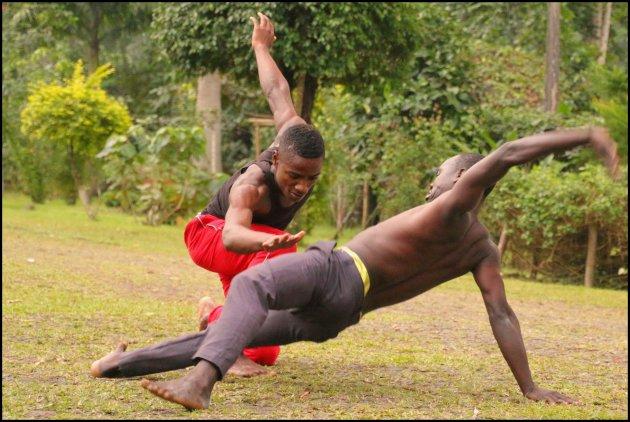 zebra dans uit Angola