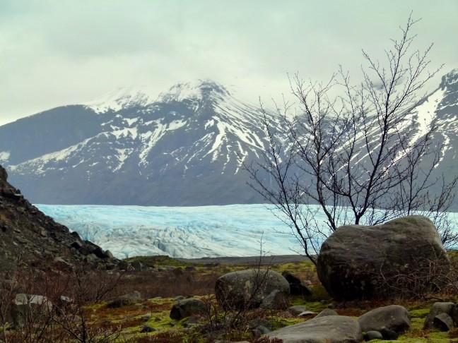 Gletsjertong