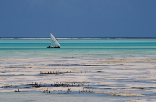 Zanzibarblauw