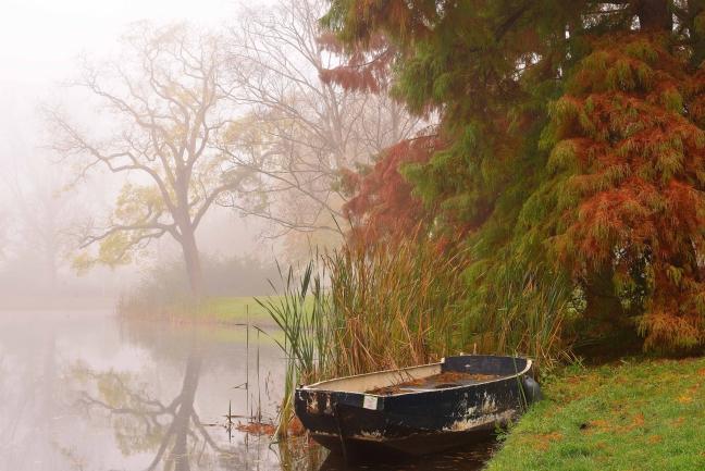 Herfst Plantsoen Leiden