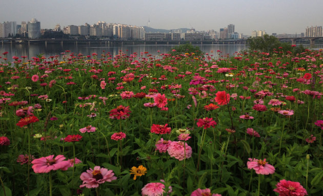 Kleurrijk Seoul