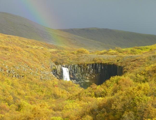 Herfst bij Svartifoss in IJsland