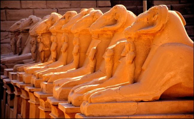 criosfinxen in Luxor