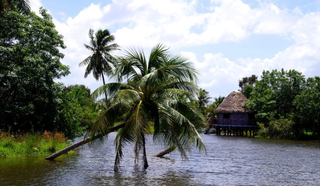 Going to Guamá