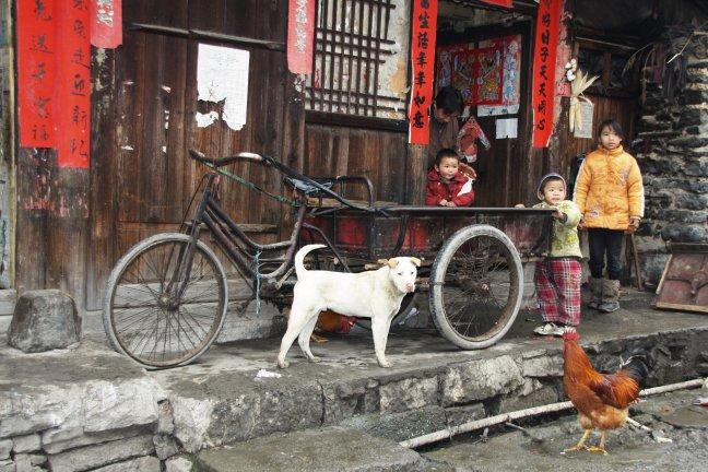 Shiqiao
