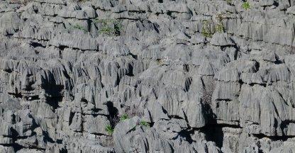 Plateau van PN de l'Ankarana