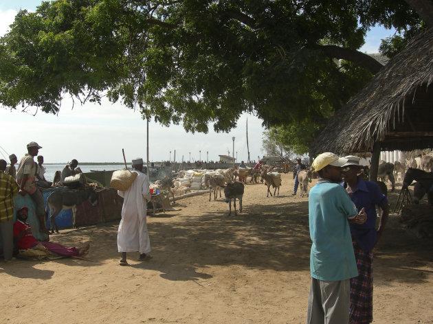 Lamu Ocean Boulevard