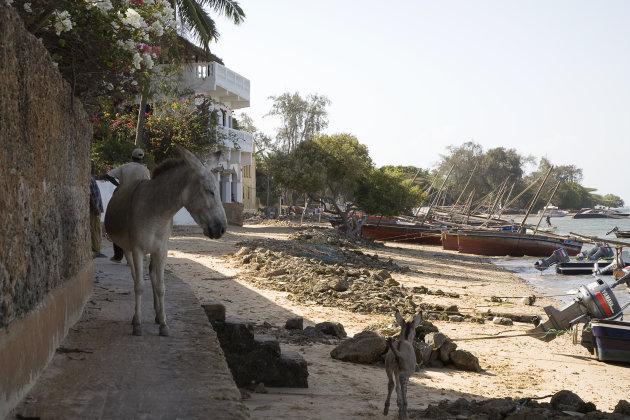 Lamu transport