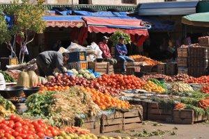 Turks Fruit?