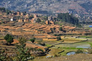Hoogvlakte nabij Antsirabe