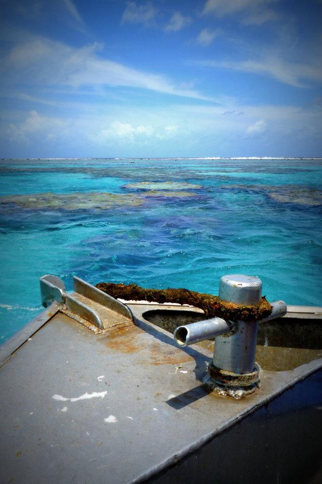 Op het koraal