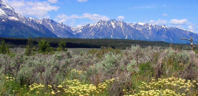 Idyllisch berglandschap Wyoming