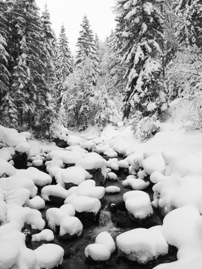 WintersWonderland