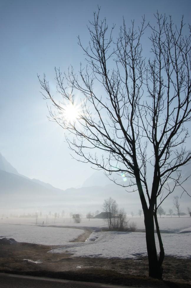 Winter zonnetje