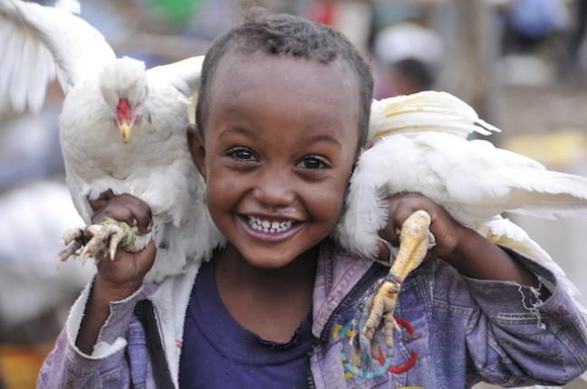 Jongetje op de markt met kippen
