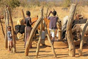 Platteland van Zambia