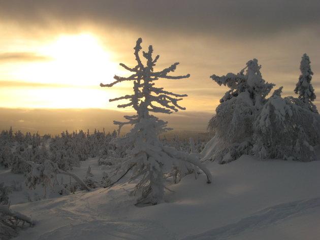 Uitzicht vanaf het skigebied Iso Syöte