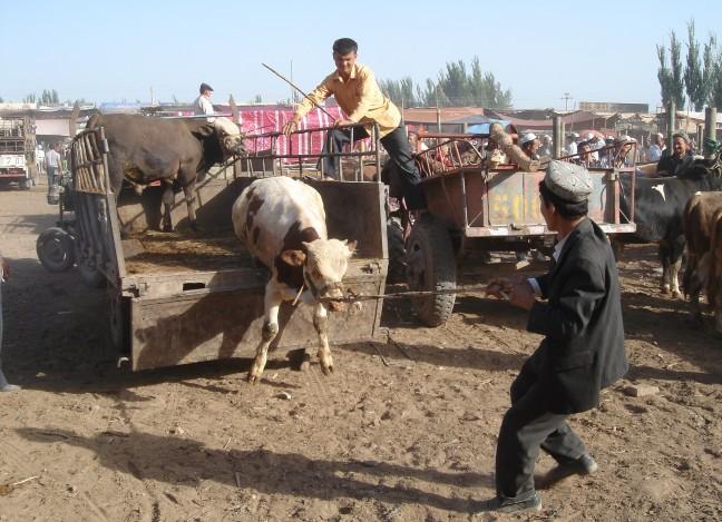 De zondagsmarkt in Kashgar (Xinjiang)