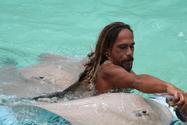 Zwemmen met Stingrays in Polynesie