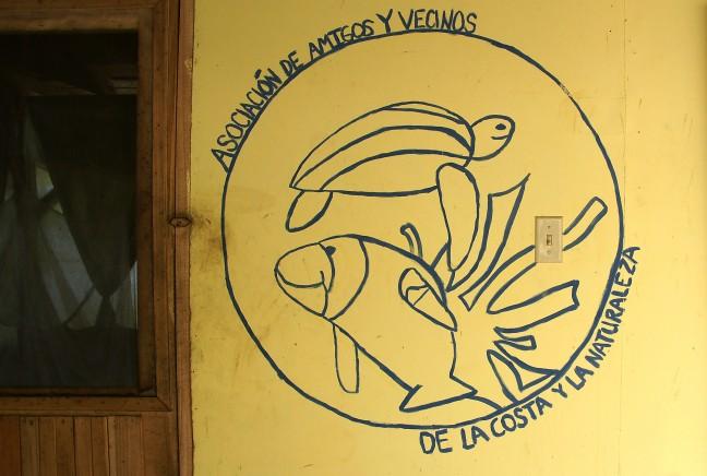 Manatees, schildpadden en bananen bij de Rio San San