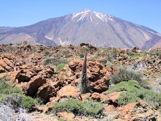 Wandelen in het vulkanisch landschap van Parque Nacional del Teide