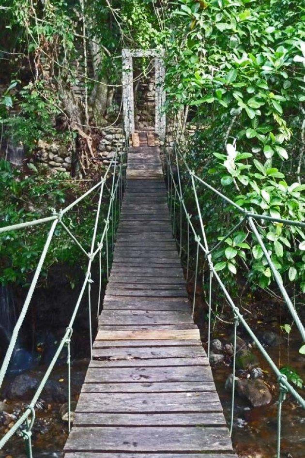 Onderga een jungle beautybad in de Onderwereld van Luna Jaguar