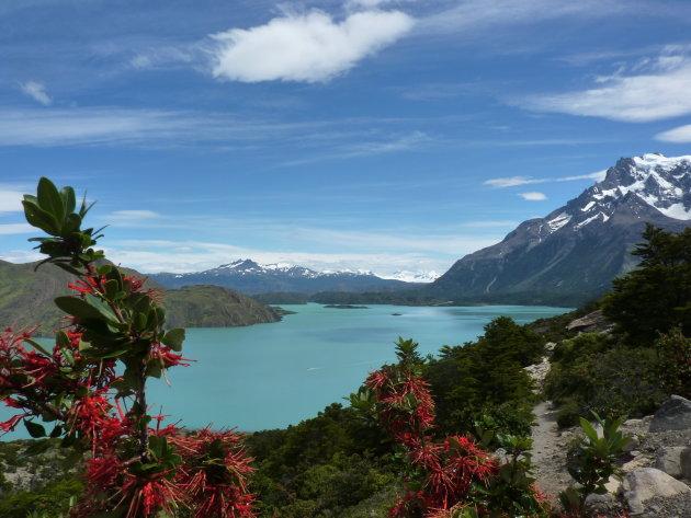 Torres del Paine W-trek: doe hem van oost naar west