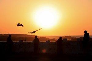 Essaouira Silhouet