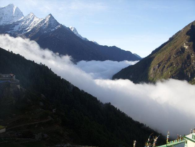 Himalaya ochtendglorie