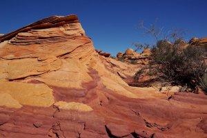 South Coyote Buttes-Vermilion Cliffs N.M.