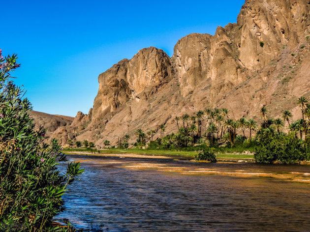 Paradijs in de woestijn