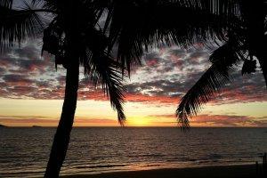 Tropische kleurenpracht
