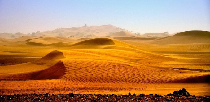 woestijn na de storm