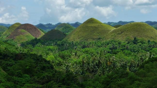 Bohol hills