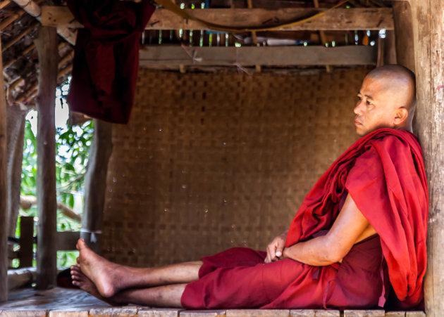 Daydreamin' Burmees Monk