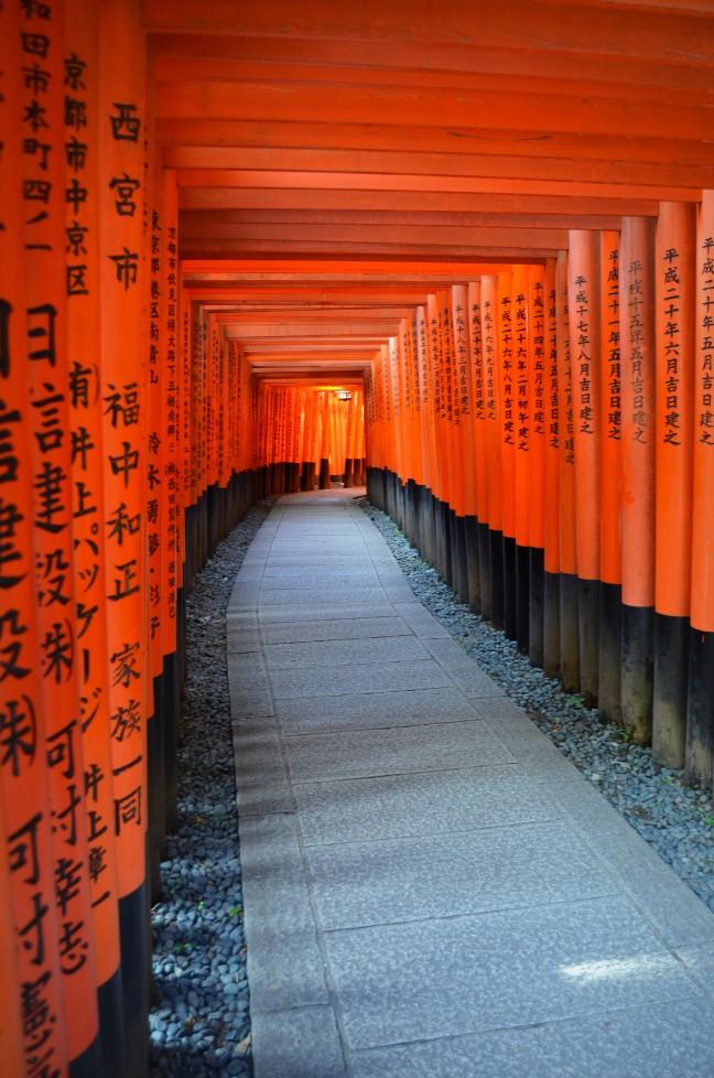 Een topper van Kyoto!