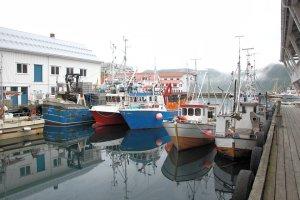 Haven van Honningsvåg met gekleurde vissersboten
