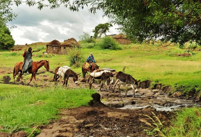 Pakezels in Lesotho