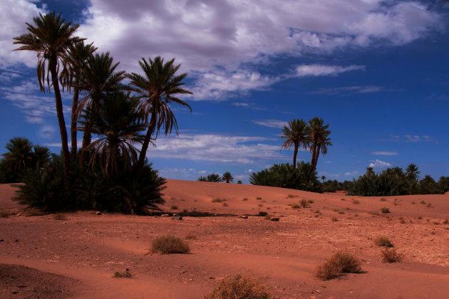 Het begin v d woestijn