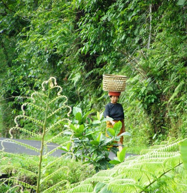 zomaar ergens op Bali