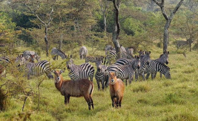 Hof van Eden bij Lake Mburo