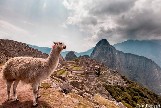 100% Peru