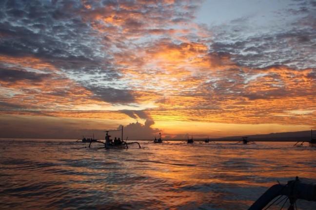 Dolfijnen kijken op Bali! Doe maar niet...