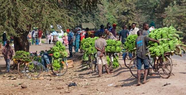 Bananenmarkt in Mto Wa Mbu