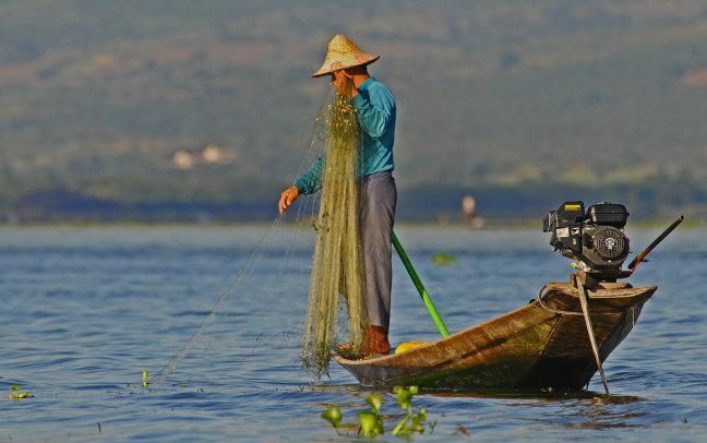 Moderne visser!