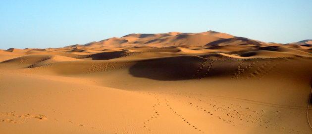 berber spreekwoord